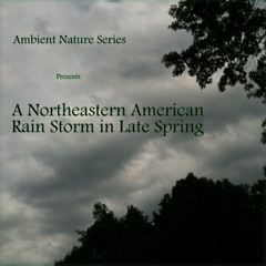 A Northeastern American Rain Storm in Late Spring