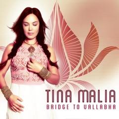 Bridge to Vallabha