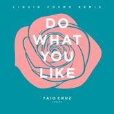 Do What You Like (Liquid Cosmo Remix) [Radio Edit] - Single