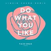 Do What You Like (Liquid Cosmo Remix) [Radio Edit] - Single