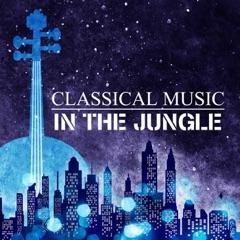 Classical Music in the Jungle