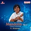 Mandolin U Srinivas Vol 4