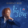 Simply Red - The Ghost of Love artwork