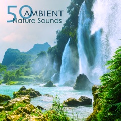 50 Ambient Nature Sounds - Relaxing Natural Music with Sounds of Nature of Mother Earth for Complete Ease, Sleep and Relax