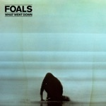 Foals - Night Swimmers