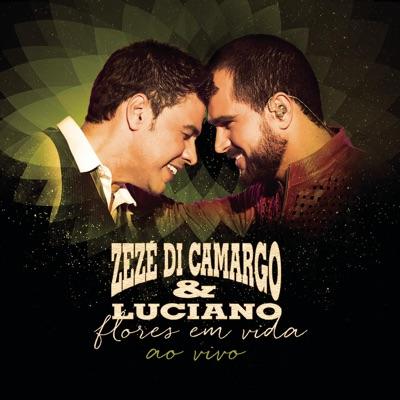 Flores em Vida (Ao Vivo) - Zezé Di Camargo & Luciano