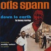 Down To Earth: The Bluesway Recordings (feat. Muddy Waters) ジャケット写真