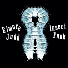 Insect Funk