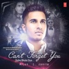Can't Forget You (Tujhe Bhula Diya) - Single