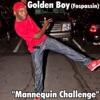 Mannequin Challenge Single