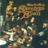 Below the Salt (2009 Remaster) - Steeleye Span