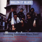 The Brunning Sunflower Blues Band feat. Peter Green - If You Let Me Love You