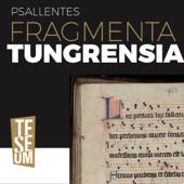 Fragmenta Tungrensia