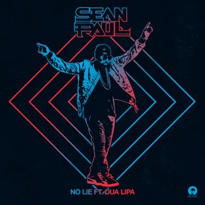 No Lie (feat. Dua Lipa) - Sean Paul song