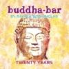 Buddha-Bar Twenty Years (feat. Ravin & Bob Sinclar) ジャケット写真