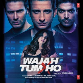 Wajah Tum Ho Movie Download HD DVDRip 720p 2016
