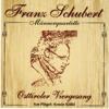 Osttiroler Viergesang - Franz Schubert - Männerquartette artwork