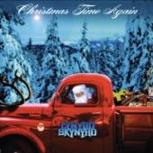 Lynyrd Skynyrd - Santa Claus Wants Some Lovin'