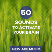 50 Sounds to Activate Your Brain: New Age Music Improves Concentration, Calm nature sounds and Healing Music to Learn, Work & Reading, Brain Stimulation and Exam Study