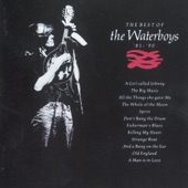 The Waterboys - Don't Bang the Drum