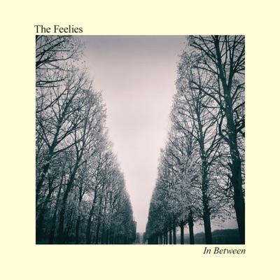 In Between - The Feelies