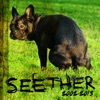 Seether: 2002 - 2013, Seether