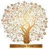 Yoga Tree Calming Yoga Music to Create Your Perfect Yoga Space Open Your Mind and Balance Your Body