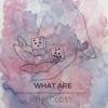 Ke$ha - We Are Who We Are