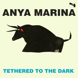 Tethered to the Dark - Single Mp3 Download