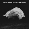 Fullness - Elevation Worship
