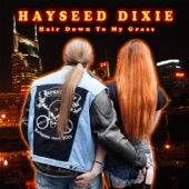 Hayseed Dixie - We're Not Gonna Take It