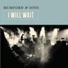 Mumford & Sons - I Will Wait artwork