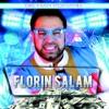 Hiturile Anului, Florin Salam