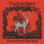 The Duke Spirit - Scratching Around (Demo)