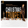 The Christmas Trumpet - Benoit d'Hau