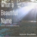 What a Beautiful Name (Instrumental) [Originally Performed by Hillsong Worship] - Kevin Durham