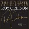 In Dreams - Roy Orbison mp3