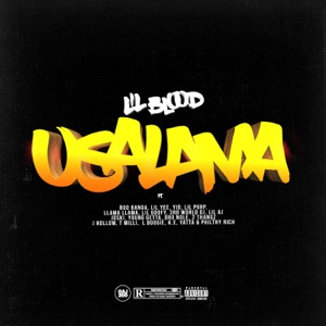 Usalama (feat. Boo Banga, Lil Yee, Yid, Lil Purp, Llama Llama, Lil Goofy, 3rd World Dj, Lil AJ, Joski, Young Getta, Dro Nole, 2 Thangz, J Hollow, T Milli, L. Boogie, K.E., Yatta & Philthy Rich) - Single Mp3 Download