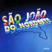 São João do Nordeste, Vol. 2