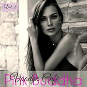 Pink Buddha Voodoo Cafè, Vol.3 - Wonderful Chill Out Music Ibiza Blank Isla del Mar Martini Chillout Collection - Buddha Chill Space & Floyd & Jones Lounge Bar Music Club
