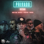Privado (feat. Konshens, Nicky Jam, Farruko & Arcángel) - Single