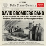 David Bromberg Band - You Don't Have to Go