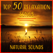 Top 50 Relaxation Songs – Natural Sounds: Healing Music for Meditation & Yoga, Nature Sound of Garden, Sea, Rain, Crickets, Birds & Wind