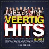 Veertig Hits, Vol. 2