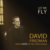 Let Me Fly-David Friedman