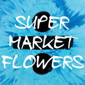 Supermarket Flowers (Originally Performed by Ed Sheeran ) [Karaoke Version]