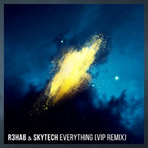 Everything (VIP Remix) - Single Mp3 Download