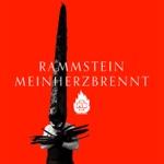 Rammstein - Mein Herz brennt (Boys Noize Remix)