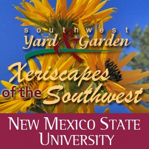 Xeriscape of the Southwest