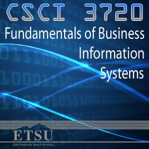 Fundamentals of Business Information Systems - Summer 2010